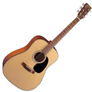 Martin D-18_acoustic guitar
