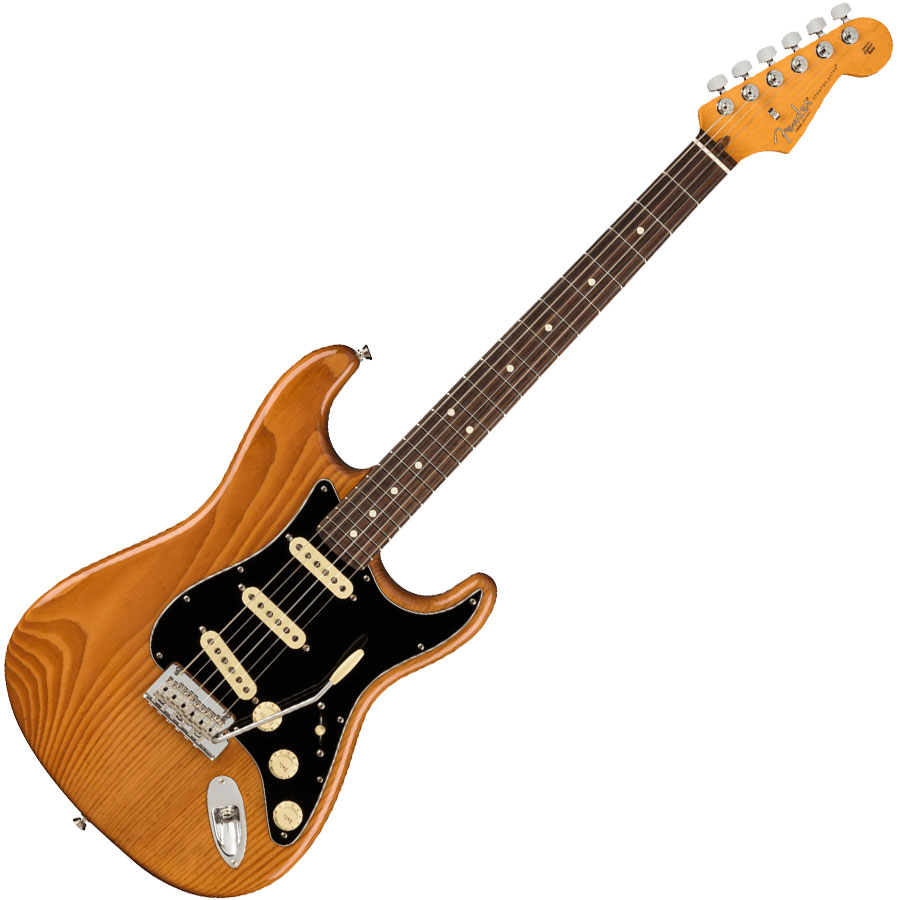 Professional II Stratocaster Roasted